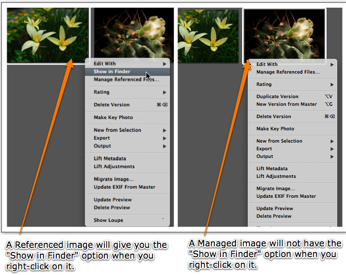 Managed vs Referenced images in Aperture