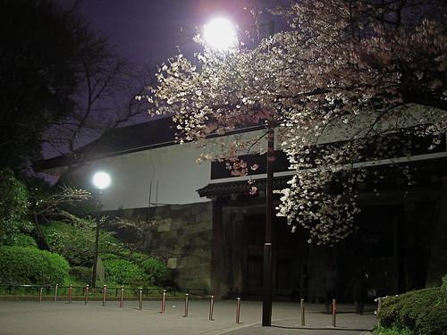 Kitanomaru Koen