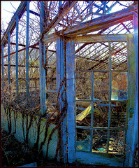 "Neglect in blue. (""alley cat photography') Tags: wild abandoned nature neglect decay longisland greenhouses decayed picnik goldcoast reclaimation huntingtonny beyondrepair hdrish caumsettstatehistoricpark"