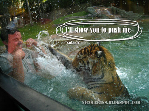 tiger splashing water