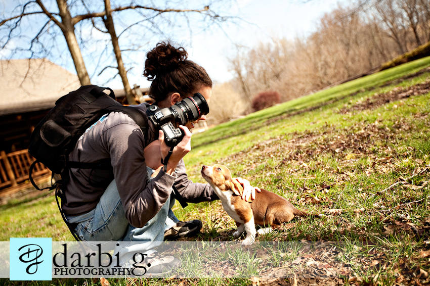 Darbi G photography-dog puppy photographer-_MG_9798-Edit