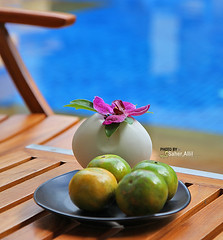 The Key to Spring ,, (Nasser Bouhadoud) Tags: 2 holiday canon thailand eos hotel spring inn key mark ii 5d nasser the phucket saher allil saherallil