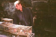 Comercio de animais