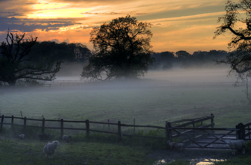 Fittleworth, Deep in the West Sussex Countryside HDR