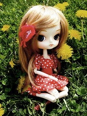Yellow flowers (Yukihana~) Tags: outside dal jp pullip rement frara obitsu junplanning nunnally furara rewig 23cmobitsu