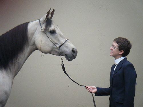 horse & rider portrait