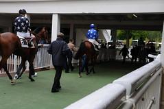JP3_0107 (JPB93) Tags: jockeys horseracing gallop galope galop
