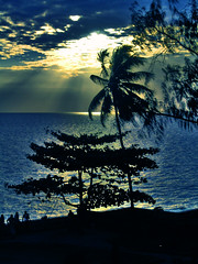 Stone Town Sunset (esinuhe69) Tags: ocean africa blue sunset sea sun tree stone town tramonto mare ray blu indian di zanzibar sole albero soe indiano oceano raggi aplusphoto theunforgettablepictures platinumheartaward esinuhe69