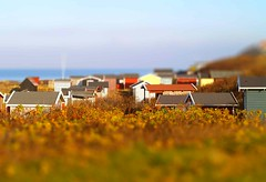Beach Houses - tiltshift style (Kirsten M Lentoft) Tags: houses beach denmark soe tiltshift kirstenmlentoft