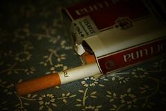 Fortuna (Héctor Rodríguez Maciá) Tags: españa macro spain fortuna tabaco cigarro albacete cigarrillo ayna paquete