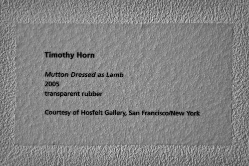 Mutton Dressed as Lamb by Timothy Horn