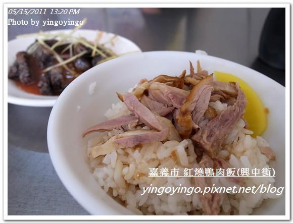 嘉義市_紅燒鴨肉飯(興中街)20110515_R0019567