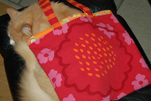 Smillis under a new tote (copyright Hanna Andersson)