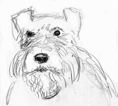 Barney Sketch