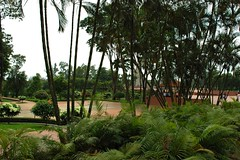 Gardens lush growth at    Jatiyo Smriti Soudho Independence memorial park, Savar, Dhaka, Bangladesh (Wonderlane) Tags: brick green gardens growth dhaka lush ferns dhania bangladesh fronds savar wonderlane 1695 jatiyosmritisoudho  independencememorialpark