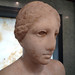 Getty Venus Head