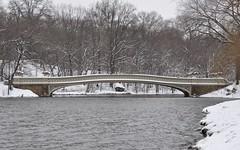 DSC_0023 (leakas) Tags: nyc newyorkcity bridge winter lake snow newyork nikon centralpark bowbridge d90