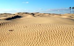 Dunes (jfgornet) Tags: sand desert tunisia dunes sable tunisie désert erg istockphoto2