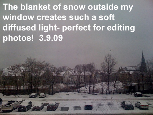 The blanket of snow outside my window creates such a soft diffused light- perfect for editing photos!