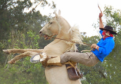 O quebra (Eduardo Amorim) Tags: brazil horses horse southamerica brasil caballo cheval caballos cavalos pelotas pferde cavalli cavallo cavalo gauchos pferd riograndedosul pampa yara hest hevonen campanha brsil chevaux gaucho  amricadosul paniolo hst gacho  campero amriquedusud  gachos  sudamrica suramrica amricadelsur  sdamerika jineteada   costadoce camperos americadelsud gineteada  americameridionale campeiros campeiro eduardoamorim