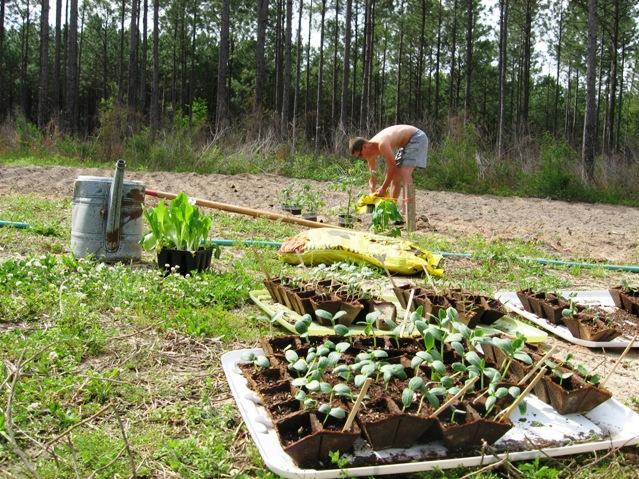 justinplanting
