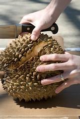 durian spread
