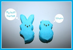 Peep Problems (pixiesticks23) Tags: blue holiday silly cute rabbit bunny easter fun hurt funny aqua candy sweet lol pastel butt ears sugar eat sprinkles marshmallow laugh winner sweets bite what peep rabbits peeps pickyourpoison agcg anythinggoeschallengegroup
