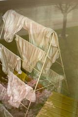 Down there it is spring (Ria Kock) Tags: reflection was spring pants underwear blossom nederland thenetherlands laundry lente bloesem reflectie wasrek ondergoed onderbroeken riakock konicaminoltadynaxmaxxum7d