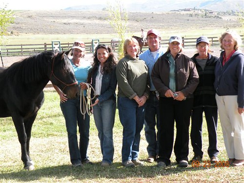 Equine Facilitated Learning and Coaching Apprenticeship Program