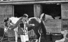 Unbridled care (Anthony Cronin) Tags: ireland horses bw dublin film analog 35mm streetphotography ishootfilm innercity ac agfa rodinal apug 50mmf14 nikonf80 foma trotters trotting dubliners dublinstreet fomapan agfarodinal realireland dublinstreets allrightsreserved dublinlife streetsofdublin irishphotography lifeindublin fomafomapan irishstreetphotography fomafomapan100 dublinstreetphotography streetphotographydublin anthonycronin filmdev:recipe=5215 dublintrotting livingindublin insidedublin livinginireland streetphotographyireland photangoirl