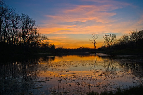 Sunset at a pond in Scott county. KY