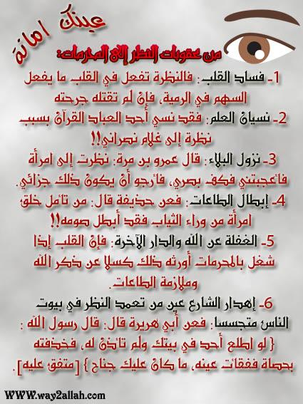 3489106383_e1da7a22b5_o.jpg