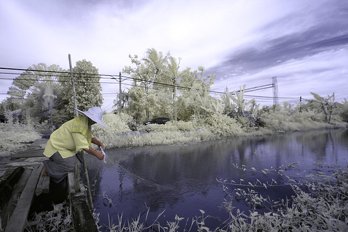 Eksplorasi Kuala Selangor | Villager  checking fish net @ Sireh Village (IR)