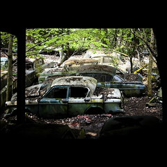 Autofriedhof (bass_nroll) Tags: old friedhof art history cars beauty graveyard car vw canon vintage model all place suisse fiat mercury unique cadillac rights bmw beatle etc dodge bern rolls stories oldies reserved royce handycraft ch confederation bianchi lancia reportage simca porshe merceds autofriedhof autograveyard helvetique 450d bassnroll kaufdorf messerli grbeatl thispicturesareprecioustome ovalino