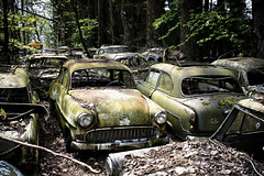 Autofriedhof (bass_nroll) Tags: old friedhof art history cars beauty graveyard car vw canon vintage model all place suisse fiat mercury unique cadillac rights bmw beatle etc dodge bern rolls stories oldies reserved royce handycraft ch confederation bianchi lancia reportage simca porshe merceds autofriedhof autograveyard helvetique 450d aplusphoto bassnroll kaufdorf messerli grbeatl thispicturesareprecioustome ovalino