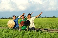 (Terachiroy) Tags: green village malaysia padi kampung selangor sawah niceview famouse sekincan tanjungkarang