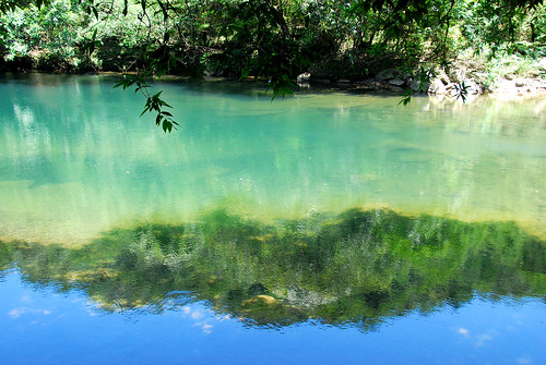 溪底的藻很像山的倒影
