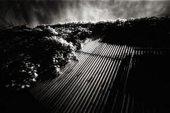 la verticale de l't :V (TommyOshima) Tags: leica blackandwhite film monochrome ir voigtlander f45 infrared rodinal 15mm 125 m7 superwideheliarii laverticaledelt