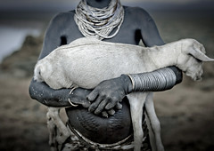 Omo valley Karo tribe Ethiopia (Eric Lafforgue) Tags: animal collier artistic dam goat tribal explore ornament valley lamb bodypainting ethiopia tribe rite karo barrage scars jewel adornment chevre pigments sheperd berger omo eastafrica thiopien etiopia ethiopie etiopa bijo scarifications lafforgue  etiopija ethiopi  etiopien etipia  etiyopya  artlibres nomadicpeople    salinicostruttori 706235    gibeiiidam gibe3dam bienvenuedansmatribu peoplesoftheomovalley