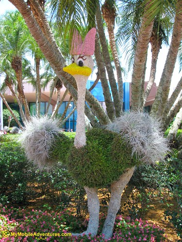 IMG_0968-WDW-EPCOT-topiary-ostrich-Fantasia