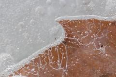 aria e ghiaccio
