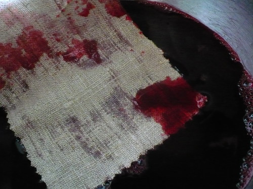 Natural Dye- Cherry Juice