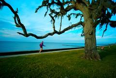 Running away (Kausthub) Tags: world blue sky tree green nature water grass digital neworleans handheld 2009 soe leicam8 colorphotoaward rubyphotographer goldenheartaward