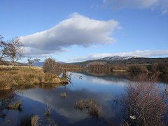 Towards Loch Tay (nz_willowherb) Tags: see scotland tour perthshire visit tourist tay loch visitor killin to go visitkillin seekillin gotokillin