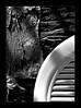 (PiggBox.) Tags: madrid light españa white black blanco lines spain chair nikon curves negro rocky plastic patio shade twigs contrasts bramble d60 lifeanddeath nuñezdebalboa piggbox lastphototakeninoldapartment