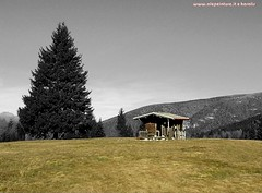 Predaia alta (Alepeinture) Tags: natura baita valdinon predaia