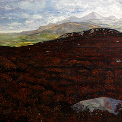 Garn Fadryn_ heatherlandscape (Rick_Dickinson) Tags: wales landscape dalton oilpainting wigan llynpeninsula hilltopview garnfadryn rickdickinson crowlanestudio canvasheather