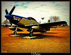 P-51 Mustang (vivsirena ( *On & Off* )) Tags: topgun amazingamateur proudshopper