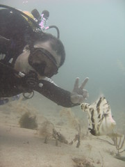 Jimmy Goh and Seagrass filefish