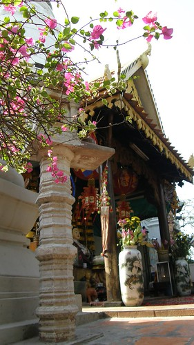 52.塔山(Wat Phnom)一景 (3)
